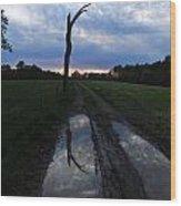 Sunset Treeflection Wood Print