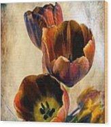Sunset Tulips Wood Print
