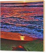Sunset Turtle By Diana Sainz Wood Print