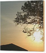 Sunset Under The Tree By The Water Wood Print