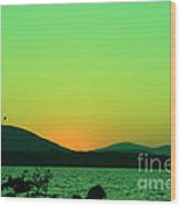 Sunset View  Wood Print