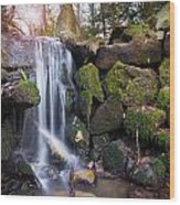 Sunset Waterfalls In Marlay Park Wood Print