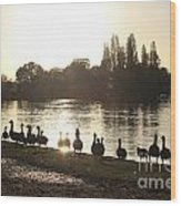 Sunset With Geese On The Thames Wood Print
