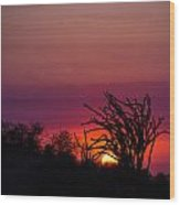 Sunset With Octopus Tree Wood Print
