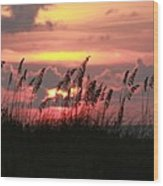 Sunset With Sea Oats Wood Print