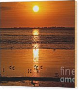 Sunset With The Birds Photo Wood Print