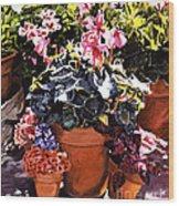 Sunshine And Flowerpots Wood Print