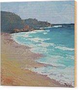 Sunshine Beach And Lions Head Noosa Heads Queensland Wood Print