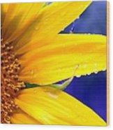 Sunshine Blue Wood Print