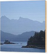 Sunshine Coast Wood Print