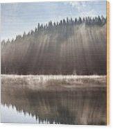 Sunshine Lake Wood Print