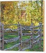 Sunshine Wood Print by Lorena Mahoney