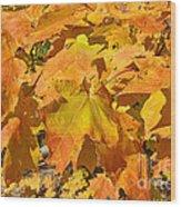 Sunshine Of Fall Wood Print