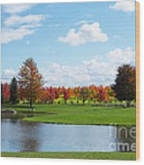 Sunshine On A Country Estate Wood Print