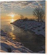 Sunshine On The Ice - Lake Ontario Toronto Canada Wood Print