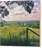 Sunshine On The Meadow Wood Print