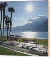 Sunshine Over A Lake Front Wood Print