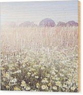 Sunshine Over The Fields Wood Print