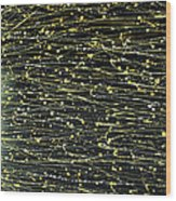 Sunstroke Wood Print