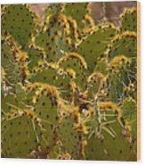 Super Cacti Wood Print
