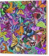 Super Rainbow Butterflies Wood Print