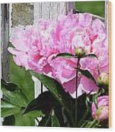 Supporting Peony Wood Print