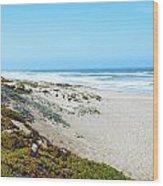Surf Beach Lompoc California 2 Wood Print