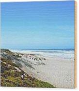 Surf Beach Lompoc California Wood Print