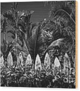 Surf Board Fence Maui Hawaii Black And White Wood Print by Edward Fielding
