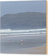 Surfing With A View Wood Print