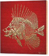 Surgeonfish Skeleton In Gold On Red  Wood Print