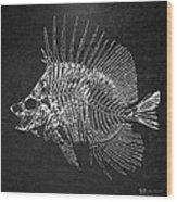 Surgeonfish Skeleton In Silver On Black  Wood Print