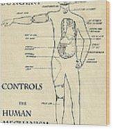 Surgery Controls The Human Mechanism   1906 Wood Print