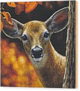 Whitetail Deer - Surprise Wood Print by Crista Forest