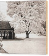 Surreal Dreamy Ethereal Winter White Sepia Infrared Nature Tree Landscape Wood Print