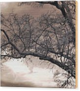 Surreal Fantasy Gothic South Carolina Oak Trees Wood Print by Kathy Fornal