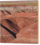 Surreal Red Landscape Wood Print