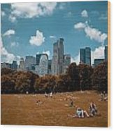 Surreal Summer Day In Central Park Wood Print