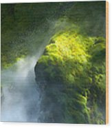 Surrounded By Mist Wood Print