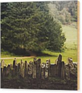 Surrounding The Pasture Wood Print