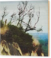Surviving On The Cliff Top  Wood Print