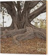 Survivor Wood Print