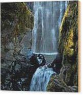 Susan Creek Falls Series 12 Wood Print
