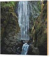 Susan Creek Falls Series 13 Wood Print
