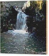 Susan Creek Falls Series 4 Wood Print