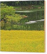 Susans Gold Pond Wood Print