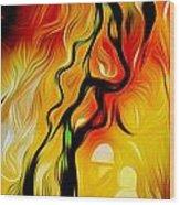 Susitna River Alaska Wood Print