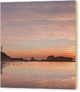 Sutro Baths Wood Print