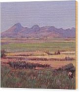 Sutter Buttes In Summer Afternoon Wood Print