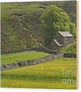 Swaledale Landscape Wood Print